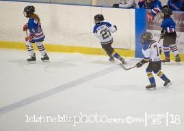 Stonewall Hockey Photographer
