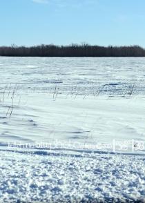Winnipeg Nature Photographer
