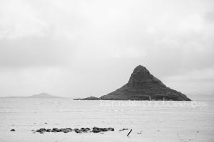 Honolulu Beach Photography