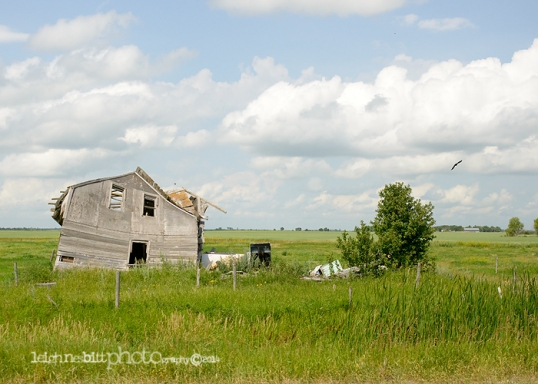 Manitoba Photography